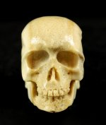 Hand Carved Bone Skull