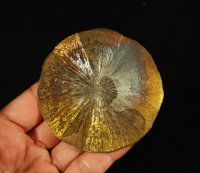 "Iridescent Pyrite ""Sun"" Crystal Formation"