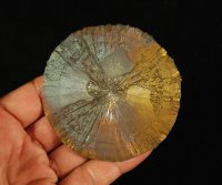 "Iridescent Pyrite ""Sun\"" Crystal Formation"